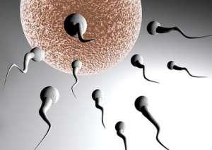 不同年龄段男性早泄原因